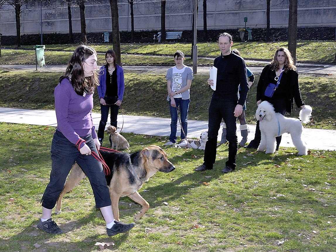 Transcend:Pictures:Education Canine (Basse Résolution):\_DSC5848.jpg